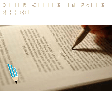 Other cities in Wales  schools