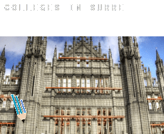 Colleges in  Surrey