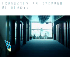 Languages in  Reading (Borough)