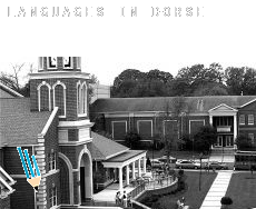 Languages in  Dorset