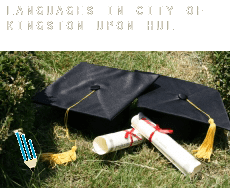 Languages in  City of Kingston upon Hull