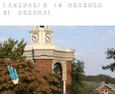 Languages in  Rochdale (Borough)